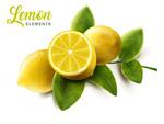 新鲜带叶柠檬