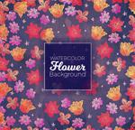 抽象花卉�o�p背景