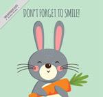 抱胡萝卜的兔子