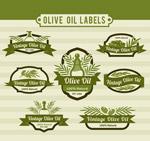 绿色橄榄油标签