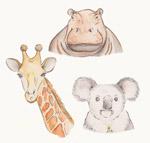 彩绘野生动物头像