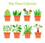 绿色盆栽设计