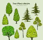 手绘绿色树木矢量