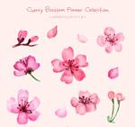 粉色樱花矢量