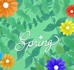 春季花卉和枝叶
