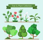 绿色树木和花卉
