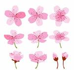 彩�L粉色�鸦�