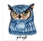 水彩蓝色猫头鹰