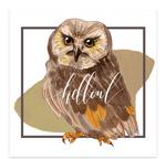 水彩绘猫头鹰