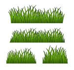 手绘绿色草地矢量