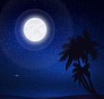 创意夜晚沙滩风景
