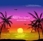 海滩夕阳和棕榈树
