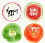 水彩绘水果切面