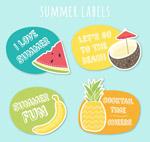 彩色夏季水果标签