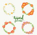 彩色热带花卉花环