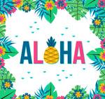 夏威夷花卉边框