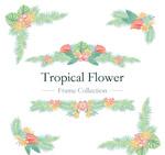 热带花卉边框