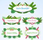 花草装饰语言标签
