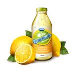 柠檬和柠檬汁饮料