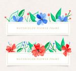 彩绘花卉框架矢量