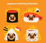日本料理装扮巴哥犬