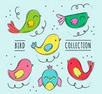 彩绘鸟类设计