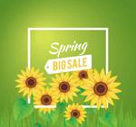 春季葵花促销海报