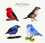 水彩绘鸟类矢量