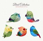 可爱水彩绘鸟类