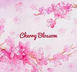 彩绘粉色樱花花枝