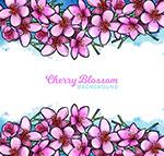 彩绘粉色樱花框架