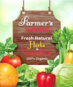 有机农场蔬菜海报