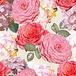 绣球花和蔷薇花背景