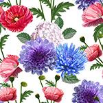 多样花卉无缝背景
