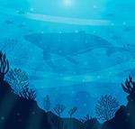 海底鱼群剪影