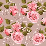 粉色玫瑰�o�p背景