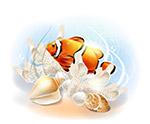 卡通海底小丑鱼