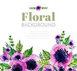 水彩绘紫色花卉