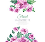 紫色玫瑰花矢量