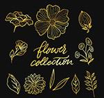 金色花卉和叶子