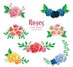 美丽玫瑰花设计