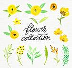 黄色花卉和树叶