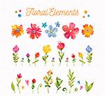 彩绘花卉和叶子