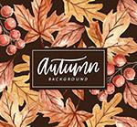 秋季树叶和浆果背景