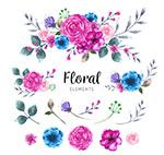 水彩绘花卉