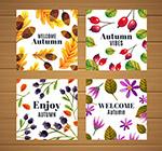 秋季花草卡片