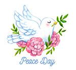 国际和平日白鸽