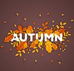 秋季落叶艺术字