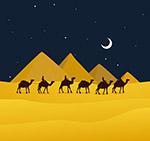 夜晚沙漠骆驼风景