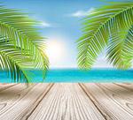 大海边木桥和棕榈树